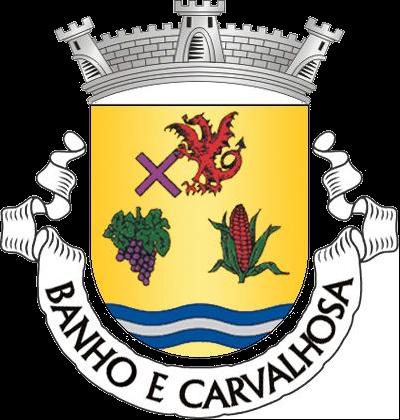 Freguesia de Banho e Carvalhosa